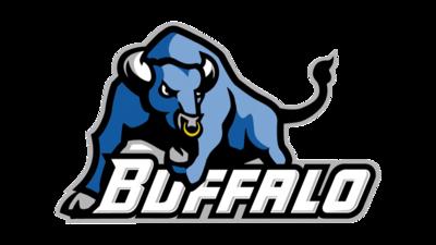 Half banner buffalo bulls transparent 800x450