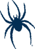 Offer_richmond-spiders-logo.svg