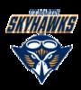 Offer skyhawk
