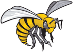 Team alabama state hornets