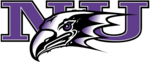 Team_niagara-purple-eagles-1000px.svg