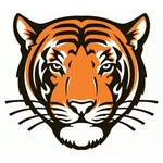 Team princeton tigers alternate logo 3 primary