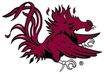 Team south carolina gamecocks mascot