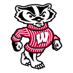 Team wisconsin badger