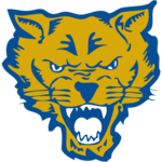 Team fort valley state logo