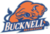 Thumb bucknell bison transparent