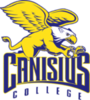 Offer canisius golden griffins transparent