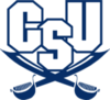 Offer charleston southern transparent