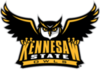 Offer kennesaw state transparent