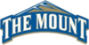 Offer mount st marys mountaineers transparent