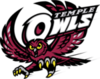 Offer temple owls transparent