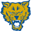 Offer fort valley state logo