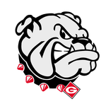 Team georgia bulldogs180