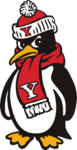 Team youngstown state penguins